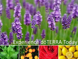experience-doterra-today