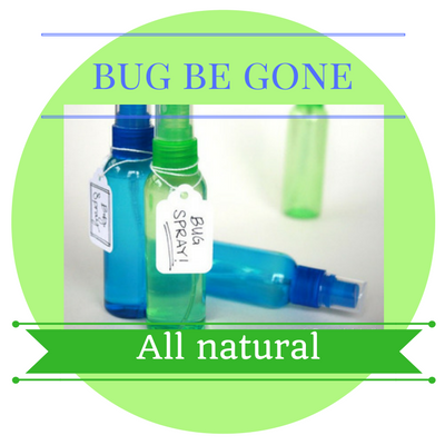 bug-be-gone