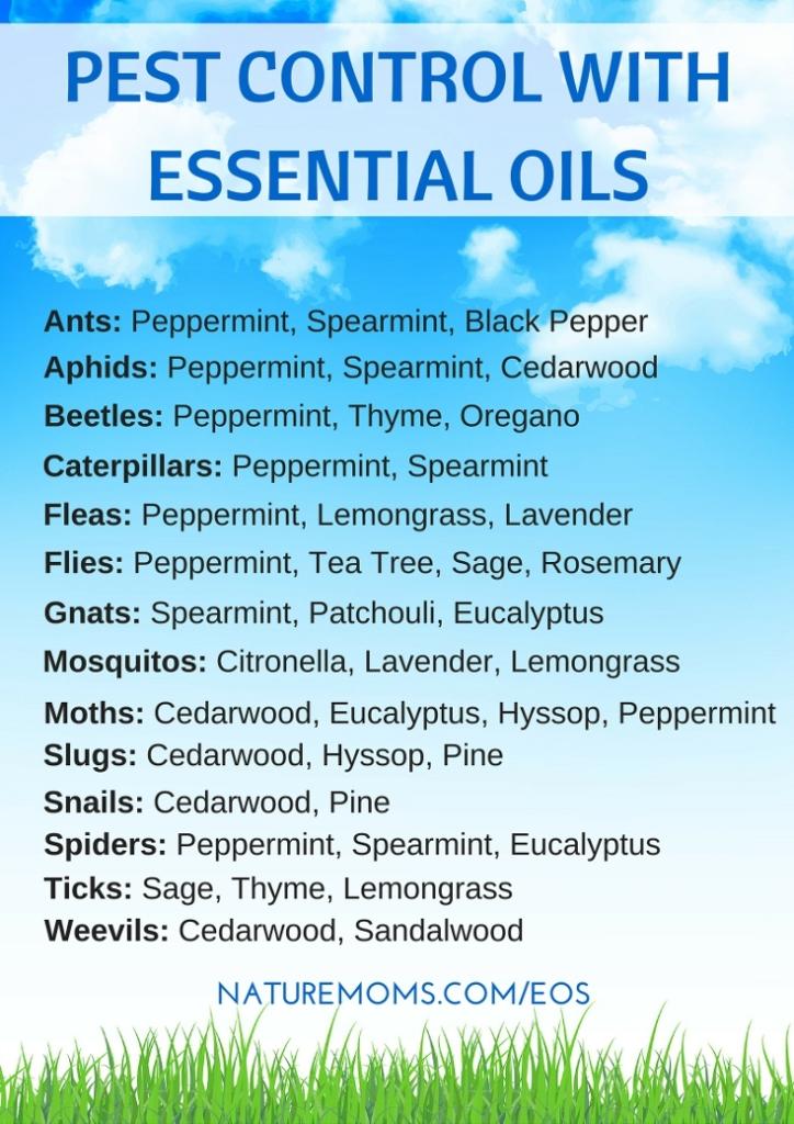 pest-control-using-essential-oils