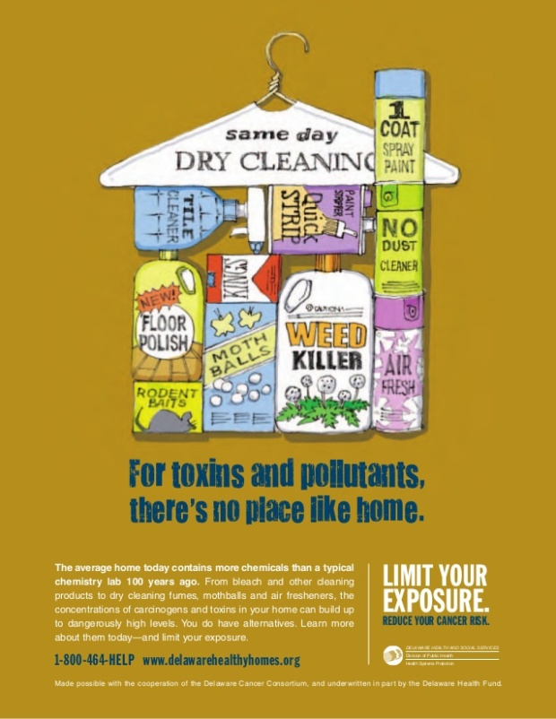 toxic-house-for-toxins-and-pollutants-limit-your-exposure-reduce-your-cancer-risk-1-638