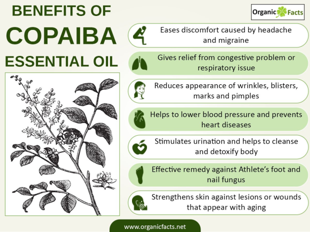benefits of copaiba