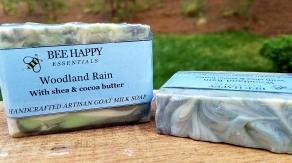 Woodland Rain picutre